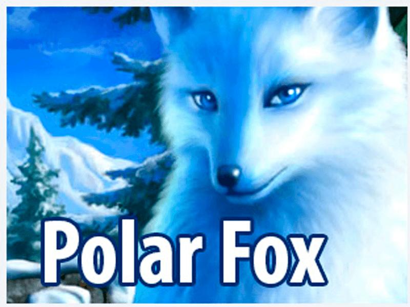 gra-hazardowa-za-darmo+polar-fox